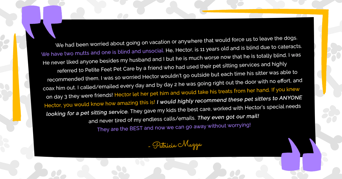 Pet sitting testimonial from Patty Mazza